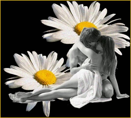 Спокойной ночи картинки с надписями красивые женщине ромашки